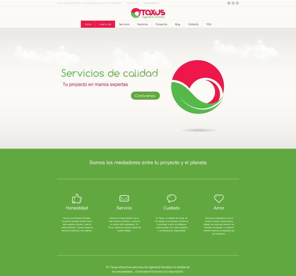 portafolios/taxus_cont2.jpg
